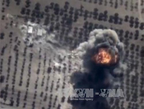 ВКС России и сирийская армия достигли больших успехов в борьбе с терроризмом  - ảnh 1