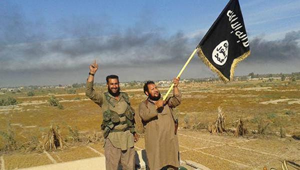 ИГ потеряло 40% территорий в Ираке и 20% в Сирии  - ảnh 1