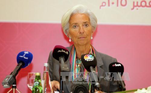 МВФ отменил правило кредитования несостоятельных должников - ảnh 1