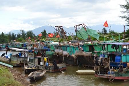 Во Вьетнаме проявляют бдительность в отношении тайфуна «Сарика» - ảnh 1