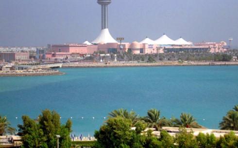 Многие страны мира призвали разрешить конфликт в странах Персидского залива - ảnh 1