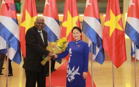 Спикер вьетнамского парламента провела переговоры с кубинским коллегой - ảnh 1