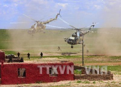 Египет оказывает Ливии помощь в реорганизации национальной армии - ảnh 1