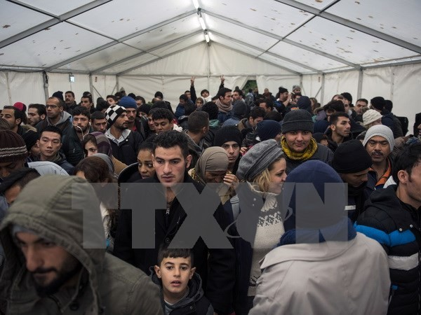 ООН призвала ЕС продлить программу по переселению мигрантов - ảnh 1