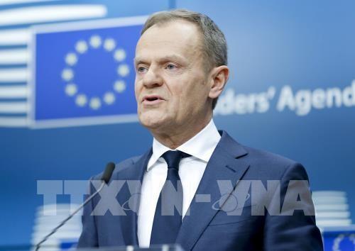 Европейский совет намерен проявить решительность на торговых переговорах с США - ảnh 1