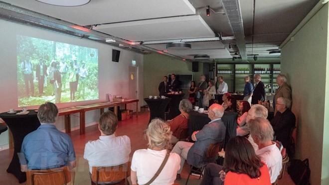 Вьетнам и Нидерланды стремятся к общему светлому будущему  - ảnh 1