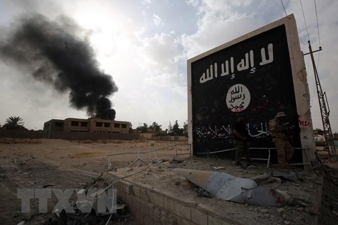 Не менее 40 человек погибли в результате атак ИГ в Сирии  - ảnh 1