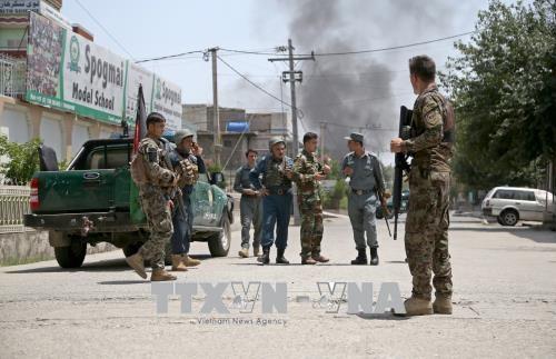 Сотни боевиков ИГ в Афганистане сдались в плен - ảnh 1