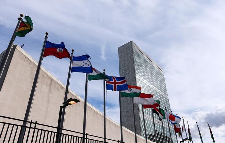 ООН подтвердила отсутствие секретной директивы по Сирии  - ảnh 1