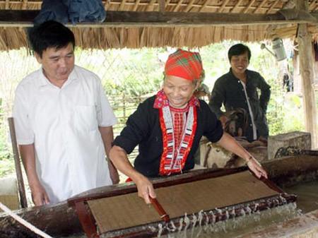 Народность Зао в уезде Баккуанг провинции Хазянг сохраняет традиционное ремесло по изготовлению бумаги  - ảnh 1