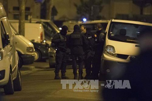 法国增加国防人员编制 应对恐怖威胁 - ảnh 1