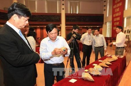 越南旧石器时代早期遗址考古学研究初步结果发布 - ảnh 1
