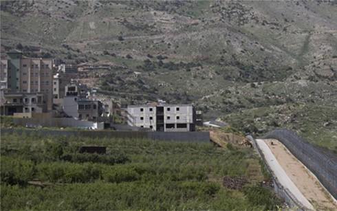 联合国安理会驳斥以色列对戈兰高地的主权宣示 - ảnh 1