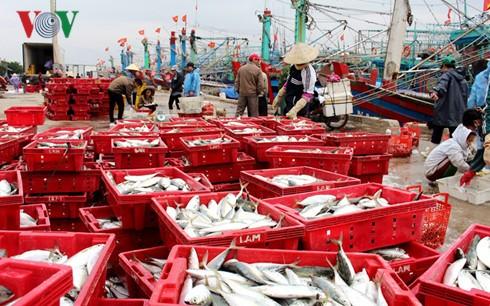 平定省渔民年初出海渔获丰收 - ảnh 1