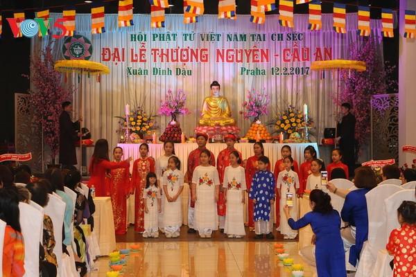旅居捷克越南人举行初春求安法会 - ảnh 1