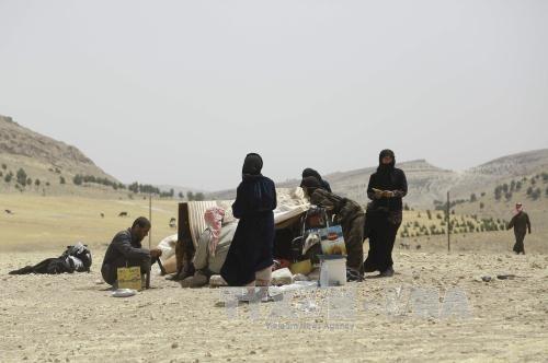 五万名叙利亚人返回土耳其政府军控制的叙领土 - ảnh 1