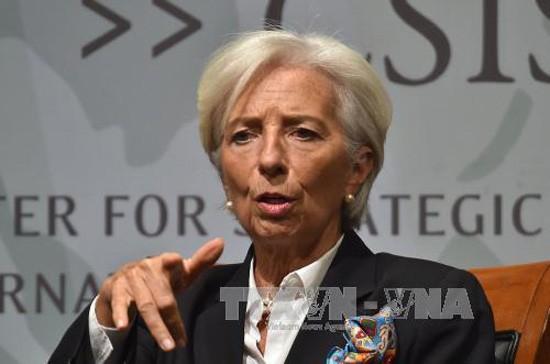 IMF、WB、WTO呼吁世界各国促进开放贸易 - ảnh 1