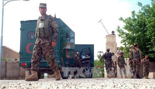 阿富汗全国哀悼塔利班袭击事件遇难者 - ảnh 1