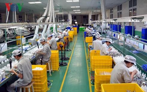 发展私营经济,越南经济的迫切要求 - ảnh 1
