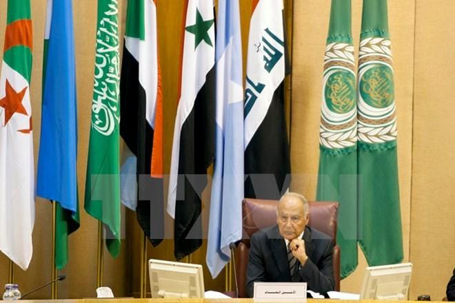 阿拉伯国家联盟将举办伊朗问题特别会议 - ảnh 1