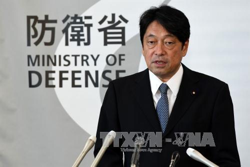 日本支持向朝鲜施加压力 - ảnh 1