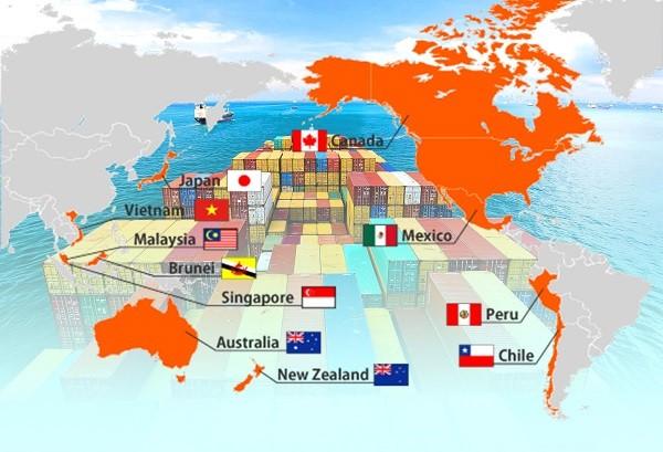 CPTPP促进21世纪贸易与投资 - ảnh 1