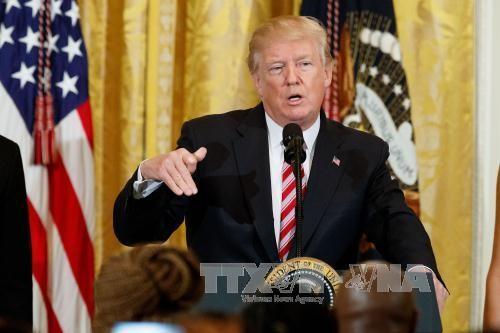 美国和欧盟将就关税壁垒进行谈判 - ảnh 1