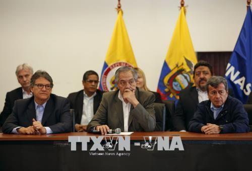 哥伦比亚政府与哥民族解放军在厄瓜多尔重启和谈 - ảnh 1