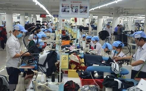改革工资制度提高劳动生产力和引进人才 - ảnh 1