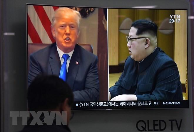 国际社会对特朗普宣布取消美朝首脑会谈相继做出反应 - ảnh 1