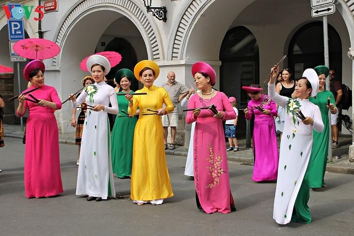 越南参加2018年捷克全国少数民族文化节 - ảnh 1