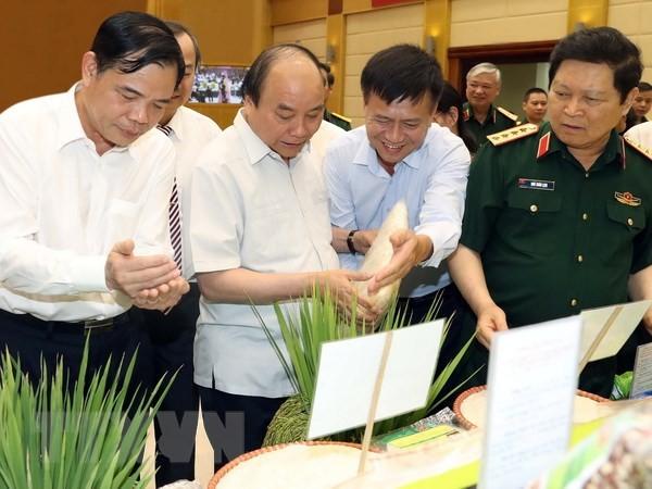 阮春福出席农业现代化提案实施小结会议 - ảnh 1