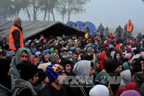 移民问题继续分裂欧洲 - ảnh 2