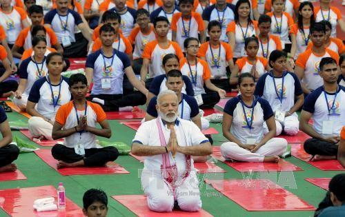 印度纪念国际瑜伽日 - ảnh 1