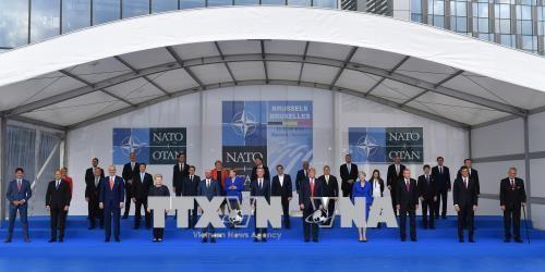 出席北约峰会的各国领导人举行双边会晤 - ảnh 1