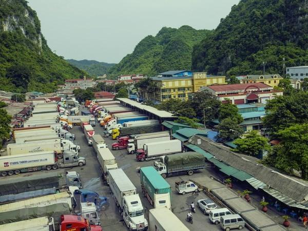 越南成为中国在东盟的第一大贸易伙伴 - ảnh 1