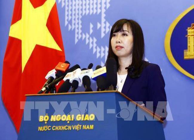 越南外交部举行例行记者会 - ảnh 1