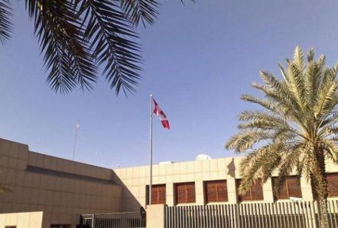 沙特阿拉伯驱逐加拿大大使 - ảnh 1