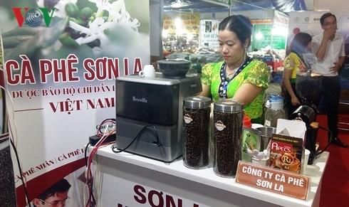 山萝咖啡地理标志日在河内举行 - ảnh 1