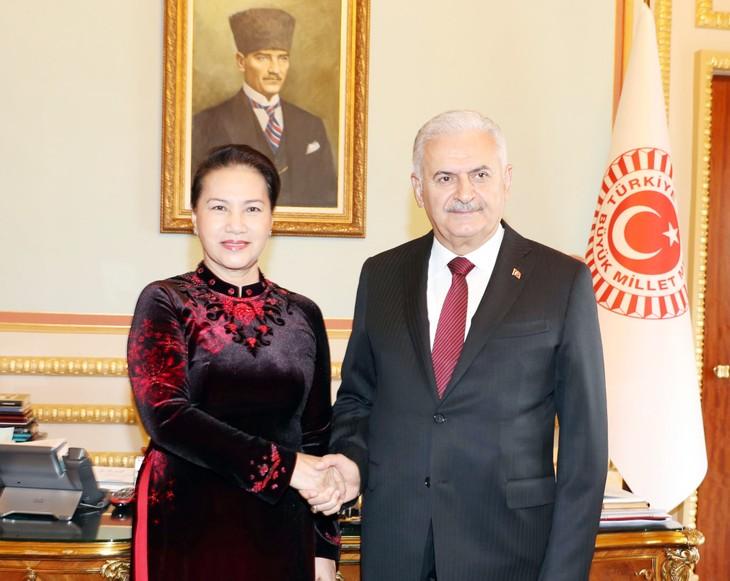 阮氏金银与土耳其大国民议会议长耶尔德勒姆举行会谈 - ảnh 1