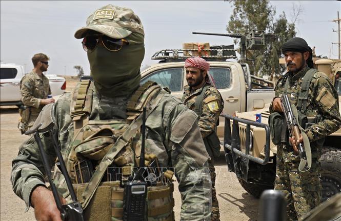 IS重占叙利亚东部所有地区 - ảnh 1