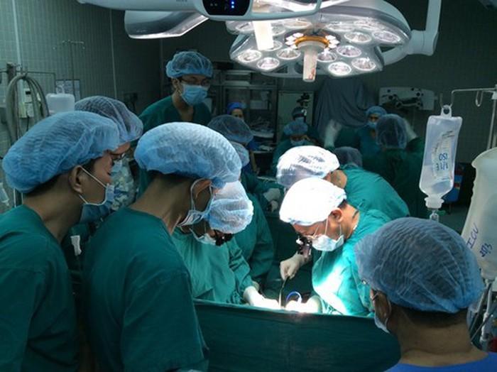 越南器官移植技术的进步 - ảnh 1