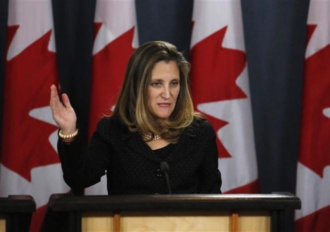 加拿大在该国两名公民被中国逮捕案件中寻找盟国支持 - ảnh 1