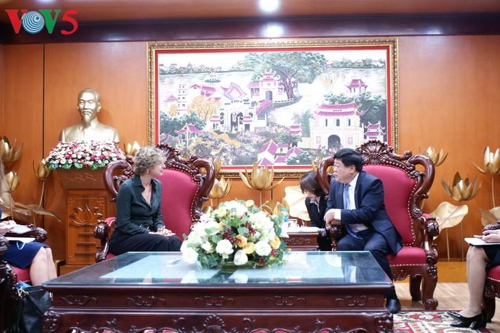 加强越南与荷兰媒体合作 - ảnh 1