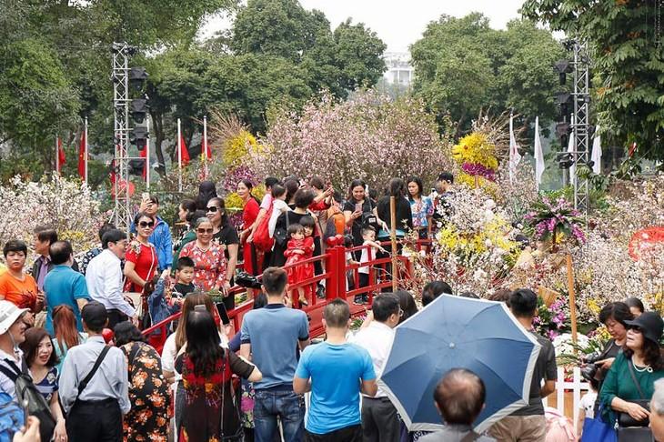 2019年河内日本樱花节 吸引100万游客 - ảnh 1