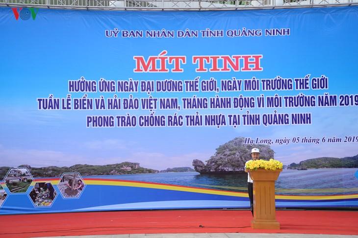 越南响应6·5世界环境日和6·8世界海洋日 - ảnh 1