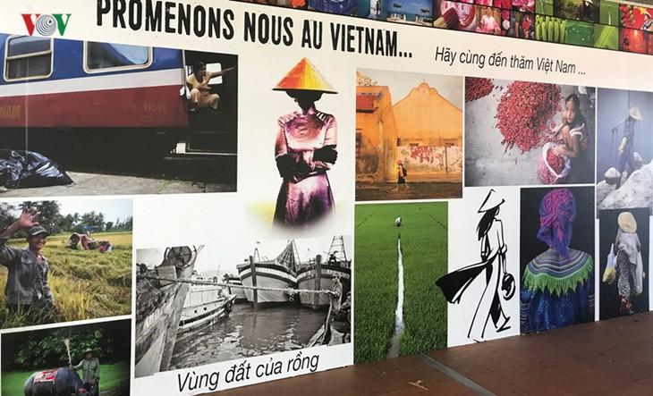 越南文化推介活动在法国举行 - ảnh 1