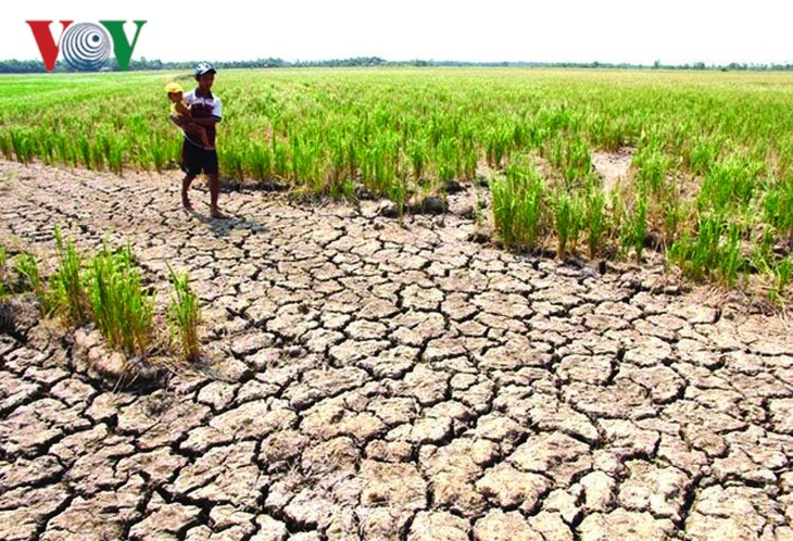 湄公河水位降至最低 威胁下游各国 - ảnh 1