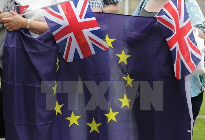 នាយករដ្ឋមន្រ្តីអង់គ្លេសពិភាក្សាអំពី Brexit ជាមួយប្រធានាធិបតីជាប់ឆ្នោតបារាំង - ảnh 1