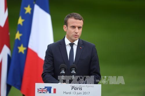 ការបោះឆ្នោតសភាជាន់ទាបបារាំង៖ គណៈបក្សរបស់ប្រធានាធិបតីលោក Emmanuel Macron ដណ្ដើមបានជ័យជម្នះ - ảnh 1